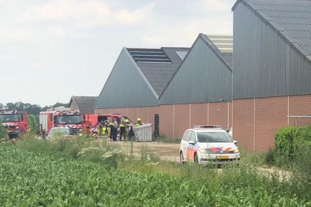 Brand bij varkensbedrijf in Egchel: dieren ongedeerd