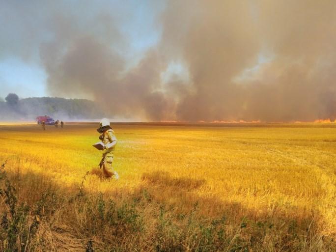 Brand in een korenveld Kessel: loonwerker schiet te hulp