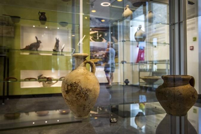 Natuur Historisch Museum in Meerssen stopt ermee vanwege een tekort aan vrijwilligers