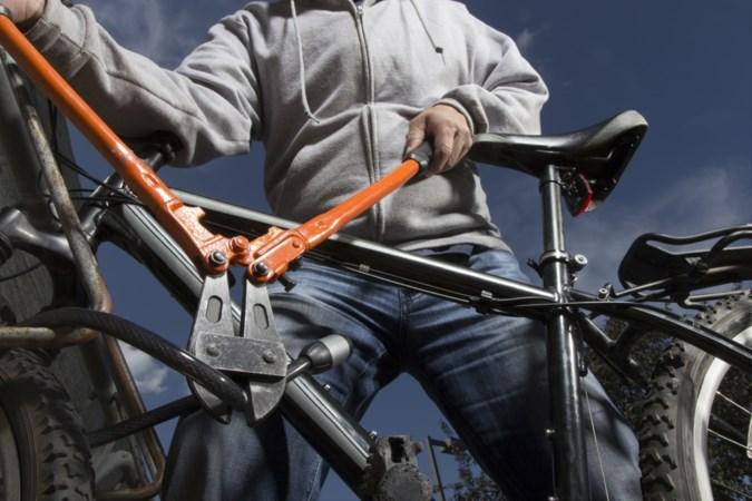 'Meijels stel runt familiebedrijf in fietsendiefstallen'