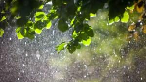 Hitte wordt geleidelijk verdreven door forse regen- en onweersbuien