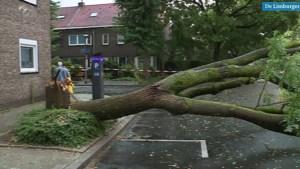 Video: Overlast en schade door pittige onweersbuien