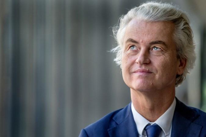 Geert Wilders: 'De PVV moet minder braaf worden'