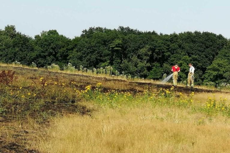 Brandweer rukt uit voor natuurbrand op heuvel in Lomm