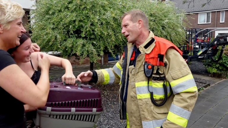 Video: Kat durft niet meer van dak af: brandweer brengt redding met hoogwerker
