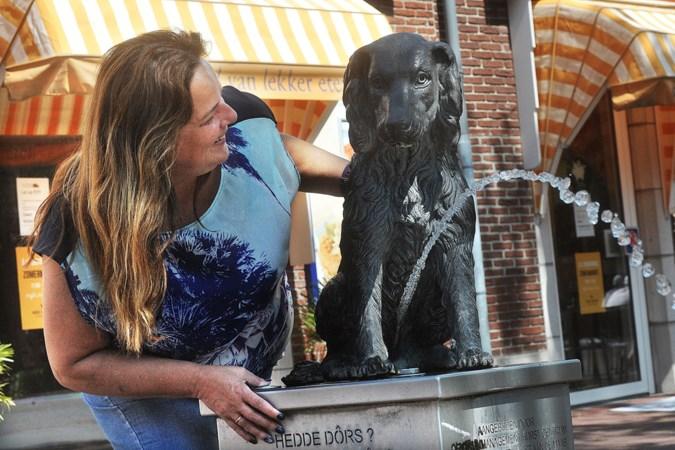 Petitie voor behoud Horster hundje: 'Veel dorpelingen hebben emotionele band met beeld'