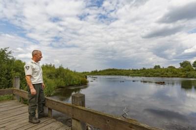 Natuur De Groote Peel door droogte in de overlevingsstand
