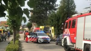 Reanimatie na aanval zwerm wespen: oudere man ernstig gewond naar ziekenhuis