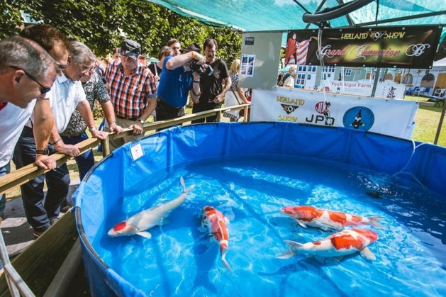 Topkwekers naar Holland Koi Show in Kasteeltuinen Arcen