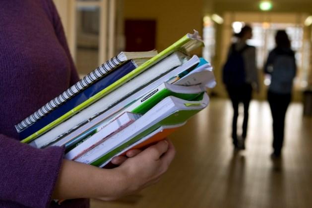 Aantal zomerscholen neemt af: laatste redmiddel zittenblijvers verdwijnt