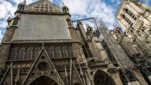 Te veel lood rond Notre Dame: nieuwe schoonmaakactie nodig