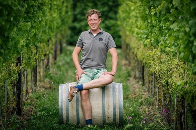 Alweer topjaar voor Nederlandse wijn