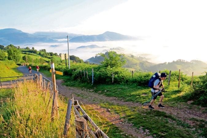 Pelgrimstocht El Camino: eindeloos wandelen richting een goed gevoel