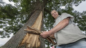 Limburgs stel kreeg schrik van hun leven bij blikseminslag: 'We zijn de boom eeuwig dankbaar'