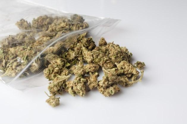 Drugshandel in Utrechts park: Tegelse vrouw (37) aangehouden