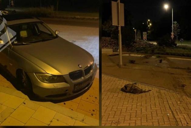 BMW zonder verlichting vliegt over rotonde na achtervolging door politie