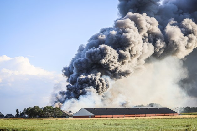 Grote brand in Friese kippenstal: circa 42.000 kippen omgekomen