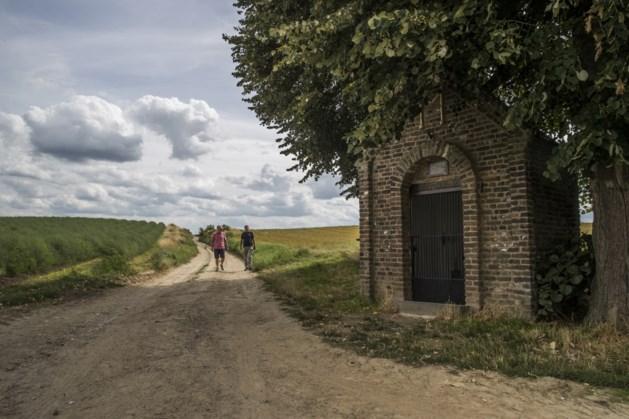PvdA: liever zonnepanelen boven parkeerplaatsen in Maastricht dan op kostbare landbouwgrond