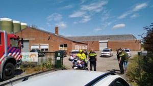 Arbeidsinspectie valt binnen bij champignonbedrijf in Lottum