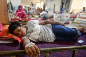 Tientallen Nederlanders in ziekenhuis met dengue-virus
