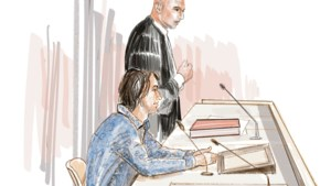 Timide, het hoofd gebogen: zo zat moordverdachte Thijs H. voor de rechter