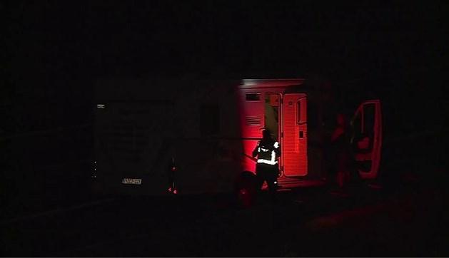 Vrouw uit Heerlen overleden na aanrijding met camper op A76