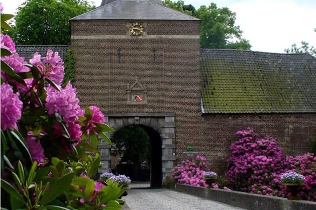 Restauratie historische schouw kasteel Arcen met behulp van 3D