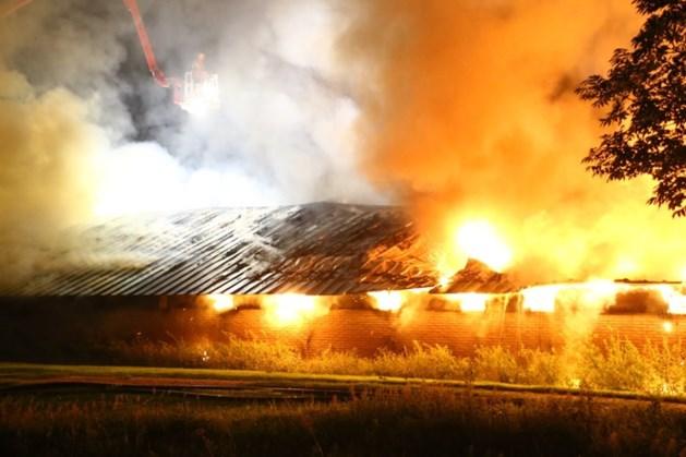 16.000 kippen komen om bij brand in Nijkerk