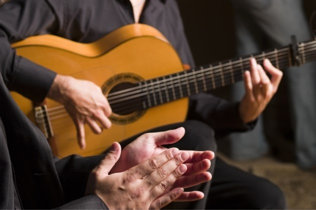 Gypsy Jazz, Ragtime Blues en akoestische muziek in 'De Tuin'