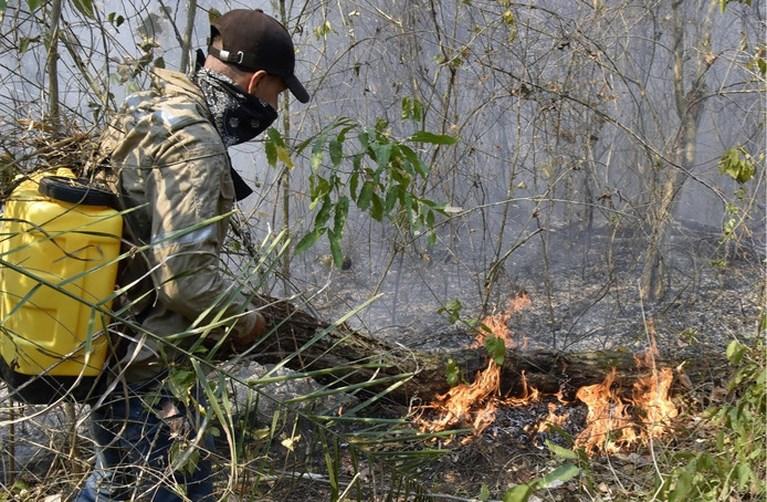 Vuurzee Zuid-Amerika raakt kwetsbare en zeldzame dieren hard