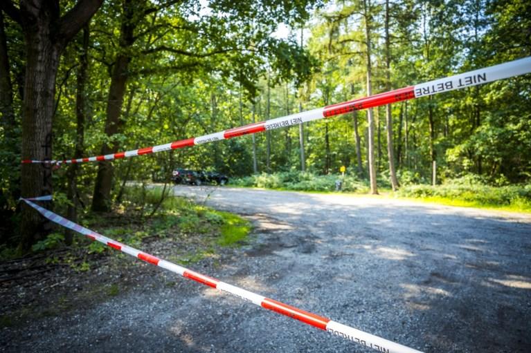 Video: Zes kilometer lint trekken: Brunssummerheide afgesloten voor schouw