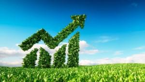 Duurzaam beleggen is niet altijd 'groen'