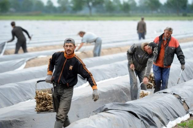 Huisvestingsplan arbeidsmigranten Helden stuit op verzet