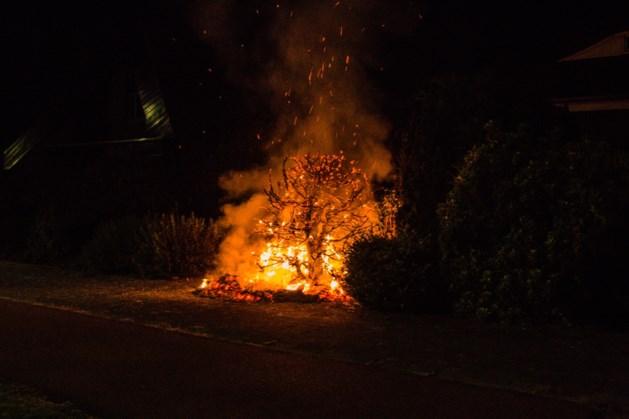 Oplettende omstanders waarschuwen bewoners voor brand in tuin Geleen