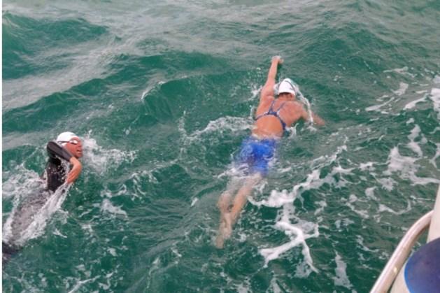 Lisa Dreesens volbrengt heroïsche zwemtocht over het Kanaal
