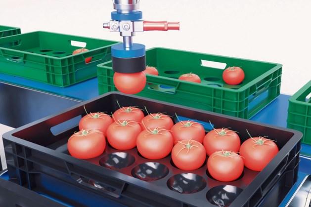 Overname in automatisering voor de tuinbouw