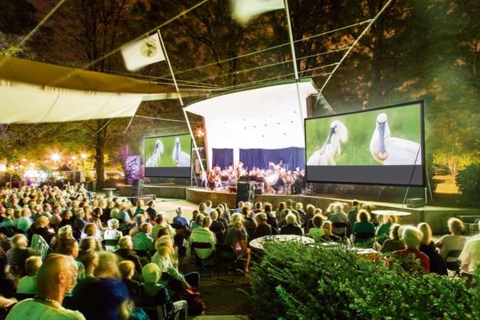 WAD Live in het theater: 'Een sopraansaxofoon hoort gewoon bij een drieteenstrandloper'
