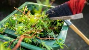 Zes zaterdagen inzamelen gratis tuinafval in Schimmert