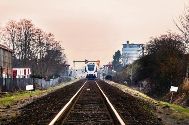 Treinverkeer Maaslijn korte tijd gestremd door persoon langs het spoor