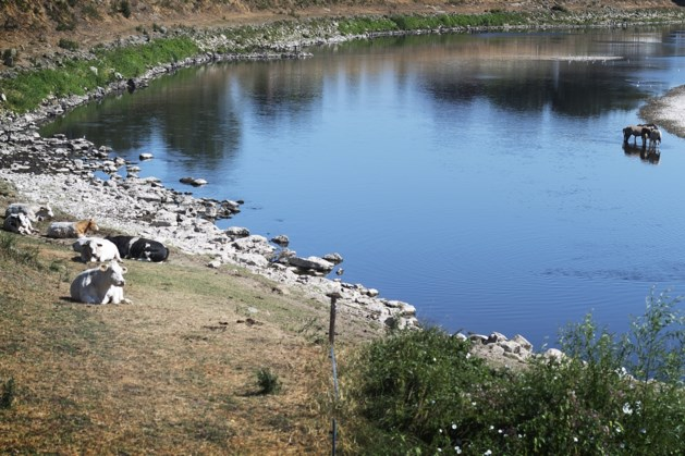 Tekort aan drinkwater uit de Maas dreigt