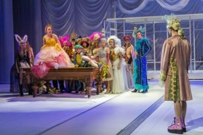 Muziektheater Amadeus: betoverend, ontroerend en humoristisch
