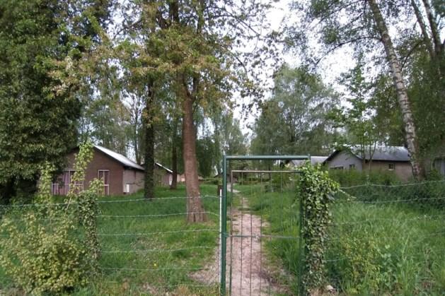 Vakantiepark Euverem vervangt 120 bomen