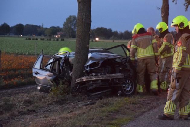 Auto botst tegen boom: bestuurder na vluchtpoging aangehouden