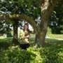 Carola Janssen perst 'vloeibaar goud' uit keihard walnoten