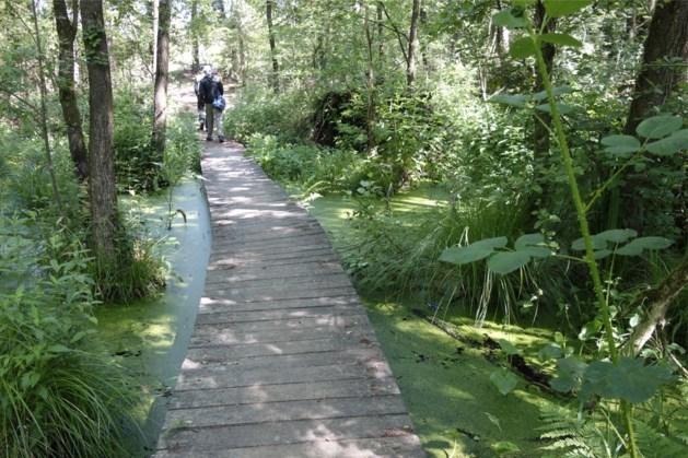 Herfstexcursie in natuurgebied 't Schuitwater
