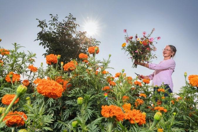 Elke dag zielsgelukkig in de pluktuin Fien Fleur in Eys