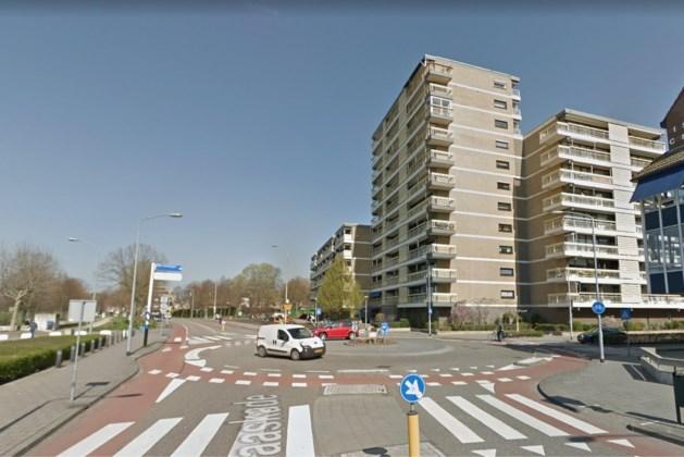 'Weesbeelden' krijgen afwisselend plek op Venlose rotonde