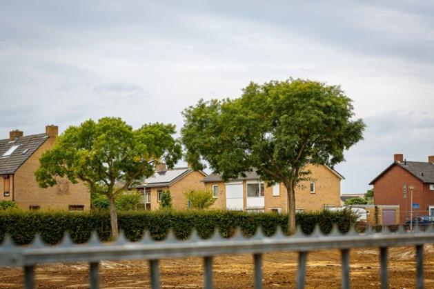 Honingbomen Maasniel moeten beschermde status krijgen