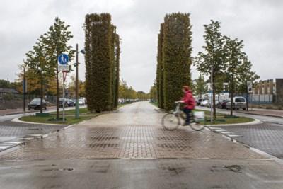 Foutje: plots is het geel van de Groene Loper in Maastricht zwart