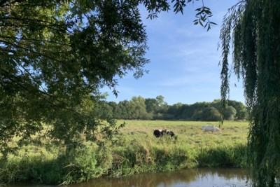 Uitfietsen door Midden-Limburg: Krakend grind en waterpret